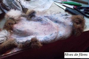 Le tannage domestique Peau-lapin-presque-appretee