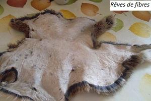 Le tannage domestique Premiere-peau-tannee-le-cuir